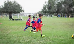 the lakes football field, nxt to hattan 1 ; 12/04/17 - 21/06/17 ; 11 weeks ; 16:45 - 17:45 ; 5 - 9 years ; wednesdays ;