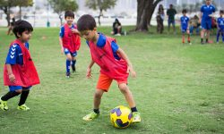 the lakes football field, nxt to hattan 1 ; 13/04/17 - 22/06/17 ; 11 weeks ; 17:45 - 18:45 ; 8 - 14 years ; thursdays ;