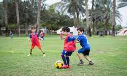 dubai british school , springs ; 08/09/18 - 08/12/18 ; 14 weeks ; 08:30 - 09:00 ; 4 years ; indoor ; saturdays ; course full  ;