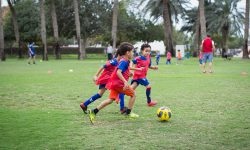 dubai british school , springs ; 08/09/18 - 08/12/18 ; 14 weeks ; 08:00 - 08:30 ; 2.5 - 3 years ; indoor ; saturdays ;