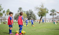 dubai british school, springs ; 09/09/18 - 09/12/18 ; 14 weeks ; 17:30 - 18:30 ; 5 - 7 years ; indoor ; sundays ;
